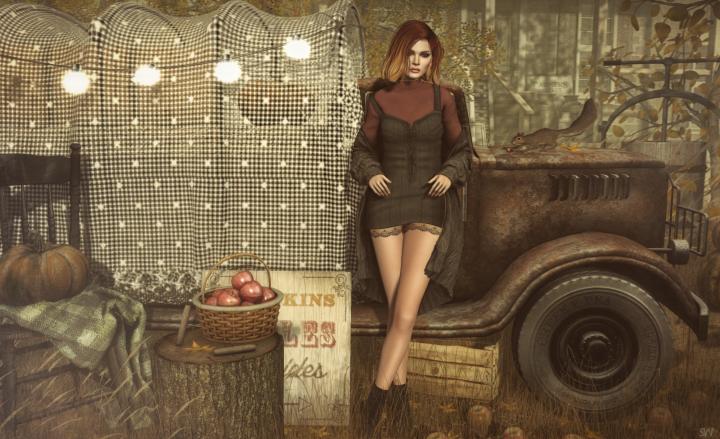apples-hayrides